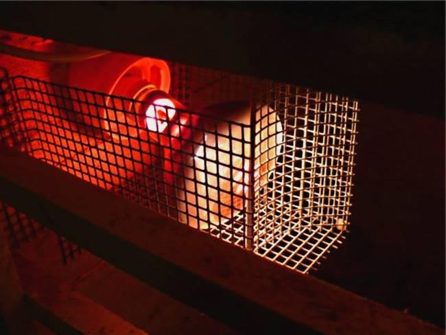 Как обогреть курятник зимой и сэкономить, лучшие варианты, естественные и искуссвенные методы обогрева