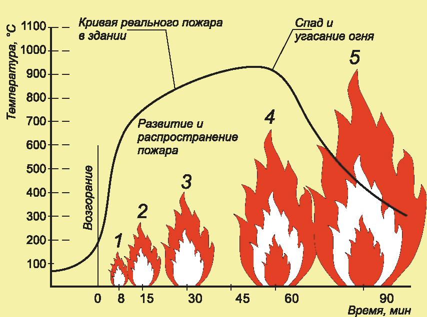 Что практичнее уголь или на дрова